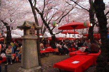 2平野神社(3).jpg