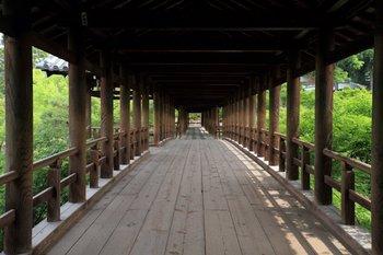4東福寺 (3).jpg