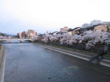 浅野川1.jpg